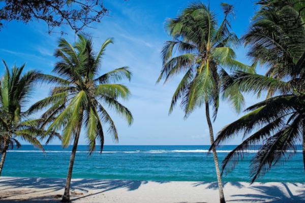 """5 """"ชายหาดที่ดีที่สุดใน เคนยา"""""""