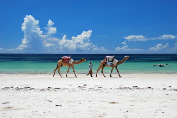 6 ชายหาดที่ดีที่สุดในเคนยา Kenya